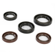 Oil Seal Kit - 0935-0826