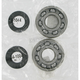 Crank Bearing/Seal Kit - 0924-0019