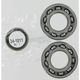 Crank Bearing/Seal Kit - 0924-0103