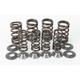 Valve Spring Kit - 80-80410