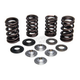 Engine Valve Spring Kit - 30-31250