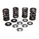 Intake Only Conversion Spring Kit - 30-31500