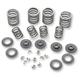 Valve Spring Kit - 15-0024