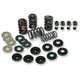 .585 in. Lift Dual Valve Spring Kit - 900-0420