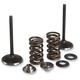Lightweight Spring and Intake Valve Kit - 40-40380