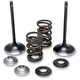 Lightweight Spring and Intake Valve Kit - 60-60720