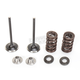 Exhaust Valve Kit - 0926-2445