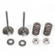 Intake Valve Kit - 0926-2448