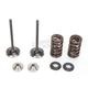 Intake Valve Kit - 0926-2450