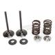 Intake Valve Kit - 0926-2451
