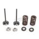 Exhaust Valve Kit - 0926-2453