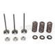 Intake Valve Kit - 0926-2457