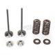 Exhaust Valve Kit - 0926-2458