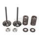 Exhaust Valve Kit - 0926-2462
