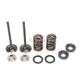 Intake Valve Kit - 0926-2463