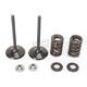 Intake Valve Kit - 0926-2465