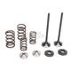 Exhaust Valve Kit - 0926-2468
