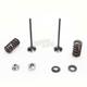 Stainless Exhaust Valve and Spring - 0926-2571