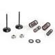 Intake Valve Spring Kit - 40-40950