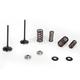 Intake Valve Spring Kit - 60-60470