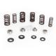 Valve Spring Kit - 80-80900