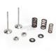Intake Valve Spring Kit - 80-80970