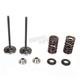 Intake Valve Spring Kit - 96-96480