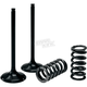 Exhaust Valve and Spring Kit - 28.SES2414-1