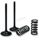 Exhaust Valve and Spring Kit - 28.SES2444-1