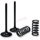 Exhaust Valve and Spring Kit - 28.SES6351-1