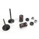 Intake Valve Kit - 0926-2732