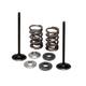 Lightweight Spring and Intake Valve Kit - 96-96130