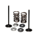 Lightweight Spring and Intake Valve Kit - 96-96450