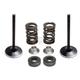 Lightweight Spring and Intake Valve Kit - 80-81050