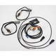 Precision Engine Management System - 604-007
