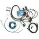 Dyntek 3000 FS Fuel and Ignition Module - DFS94