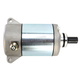 Starter Motor - 2110-0521