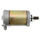 Starter Motor - 2110-0536