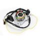 Hot Shot Stator w/Lighting Coil - 2112-1143