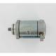 Starter Motor - 2110-0066