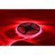 Red LED Reel Light - LEDREELRED