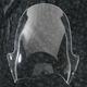 Clear Adventure Windscreen - 2312-0211