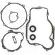 Dirt Bike Bottom-End Gasket Kit - C3352