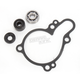 Water Pump Repair Kit - WPK0033