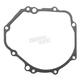 Stator Cover Gasket - EC813032AFM