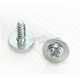 Visor Screws - 72-0768