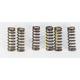 Clutch Spring Set - CSS05450