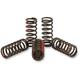 Clutch Spring Set - CST09250