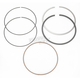 Piston Rings - +.010 in. - 3880VM
