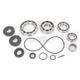 Rear Differential Bearing Kit - 1205-0242